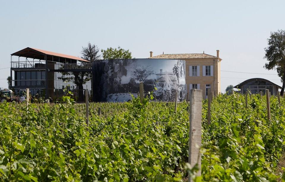 Bordeaux: Un domaine de Saint-Emilion offre 25 caisses de son grand cru à l'équipe de France de foot